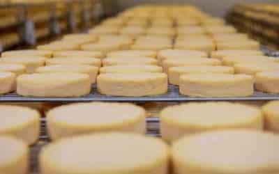 Le fromage Munster en difficulté